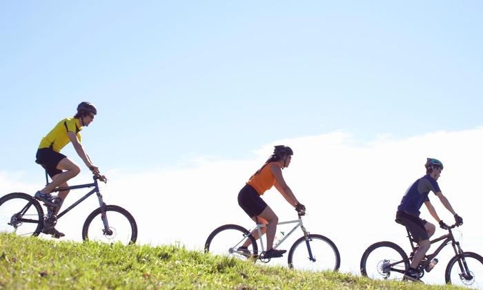 JoyRide Rental - Fort Lauderdale: $248 for $450 Worth of Bicycle Rental — Joyride Rental