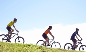 JoyRide Rental: $248 for $450 Worth of Bicycle Rental — Joyride Rental