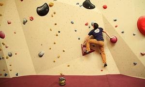 ein stein boulderhallen GmbH & Co. KG: 1 Tageskarte Bouldern oder 1 Stunde Einstiegskurs für bis zu 2 Personen in der einstein Boulderhalle Ulm ab 5,90 €