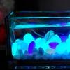 Glow-in-the-Dark Pebbles (100-Count)