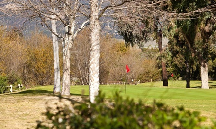 9 Holes of Golf for Four, 4 All-Day Passes, or Range Balls for 30 Days at Twin Lakes Golf Course (Up to 48% Off)
