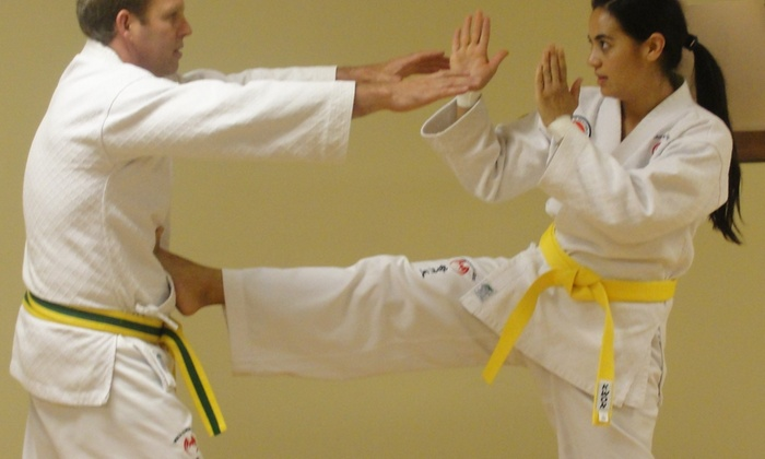 Ki Martial Arts Centers - Littleton: $33 for $130 Worth of Martial-Arts Lessons — Ki Martial Arts Centers