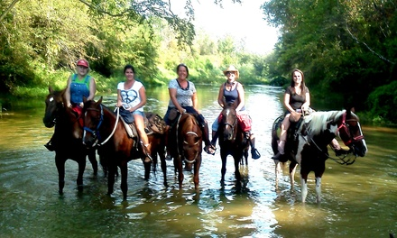 Five-Hour Horseback Trail Ride for One, Two, or Four at Loveland Ranch (Up to 50% Off)
