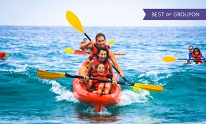 Bike & Kayak Tours: 90-Minute Coronado Double-Kayak Rental or Tour for Two from Bike & Kayak Tours (Up to 51% Off)