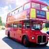 Royal London Bus Tour