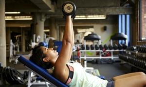 Body & Fitness: 10 o 20 ingressi open in sala cardio-fitness, pesi e box funzionale alla palestra Body & Fitness (sconto fino a 81%)
