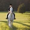 Pferde-Erlebnistag in Rodewald