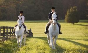 Reitschule Lichtenhorst: Pferde-Erlebnistag mit Verpflegung für ein oder zwei Personen in der Reitschule Lichtenhorst (bis zu 67% sparen*)
