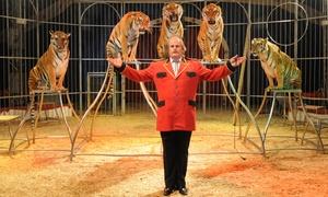 """Zoorprendente, el Circo de los Animales: Entrada a """"Zoorprendente, el Circo de los Animales"""" desde 6,50€ en El Circ de Nadal"""