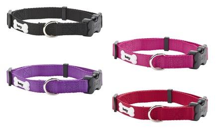 Bunty Middlewood Nylon Dog Collar or Lead