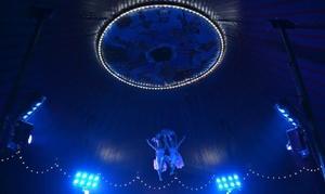 Circo Raluy Legacy: Entrada para el espectáculo del Circo Raluy Legacy del 24 de febrero al 5 marzo desde 5 € en Gavà