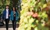 Regatta Women's Thorn Fleece Jacket