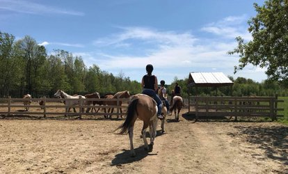 Group Horseback Riding for One, Two or Four or Private Lessons at Centre Équitaz (Up to 50% Off)