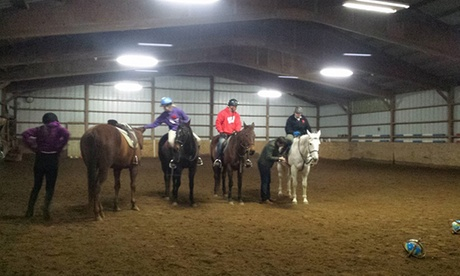 Up to 51% Off on Horse Back Riding - Training at Hillside Farm LLC