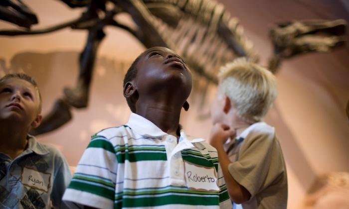Livingsocial Natural History Museum