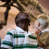 Free Event: Free Days at the Field Museum