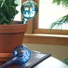 Evelots Plant-Watering Glass Globes (3-Pack)