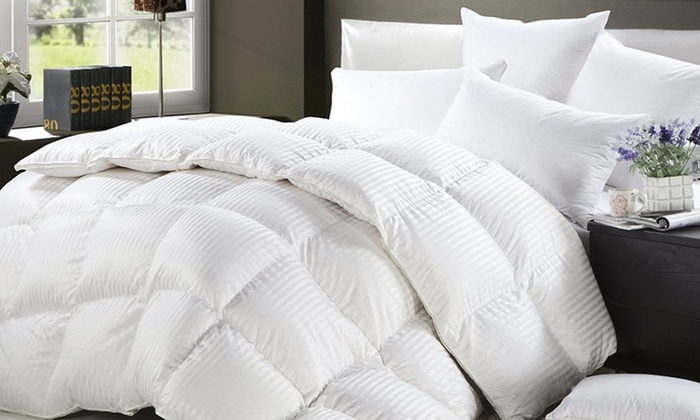 Prestige Ice Land Goose Down Comforter