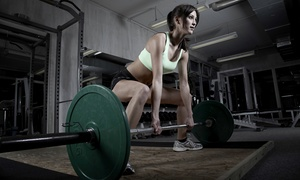 The Training Pit - Hallandale: One Month Unlimited CrossFit Boot-Camp Classes for One or Two People-Training Pit - Hallandale (Up to 85% Off)