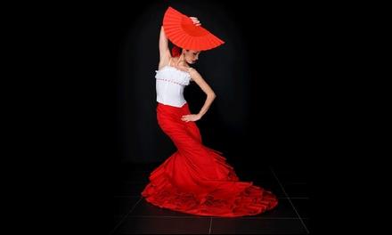 4 o 8 lezioni di flamenco, Modena