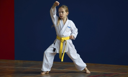 Up to 81% Off Karate Classes at Karate America - Appleton