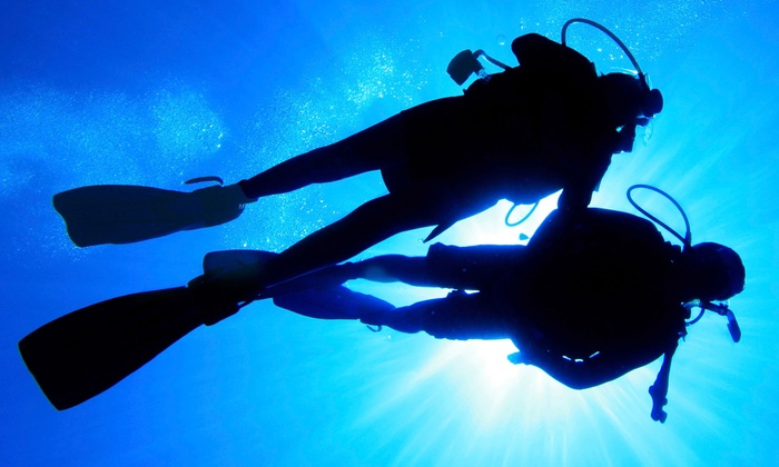 Dive Utah - Holladay: Discover Scuba Class or Open Water Scuba Certification at Dive Utah (Up to 52% Off)