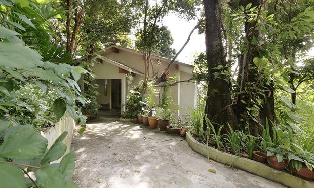 Langkawi: Tropical Hideout 5