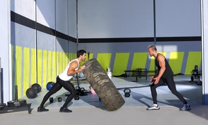 The Spartan Gym: 10 Fitness Classes at The Spartan Gym (65% Off)