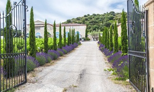Languedoc : 1 à 2 nuits avec spa et dégustation de vin en option Saint Jean De Fos