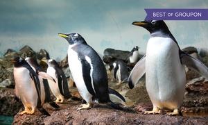 Zoo Frankfurt: 2 Tageskarten für Erwachsene für den Zoo Frankfurt (45% sparen*)
