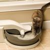 PetSafe Simply Clean Litterbox