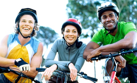Two- or Four-Hour Bike Ride for One or Two from Must See Central Park (Up to 58% Off)