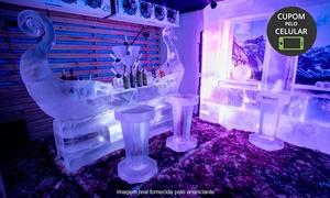 Taverna Icebar: Visitação (opção com drink ou open bar) no Taverna Icebar - Martcenter Shopping