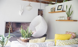 Trendimi: $19 for an Accredited Interior-Design and Home-Styling Course from Trendimi ($229 Value)