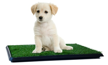 Puppy Potty Trainer, The Indoor Restroom for Pets