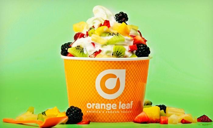 Orange Leaf Frozen Yogurt - Orange Leaf Frozen Yogurt (Seekonk): $12 for Four $6 Vouchers for Frozen Yogurt at Orange Leaf Frozen Yogurt in Seekonk (a $24 value)