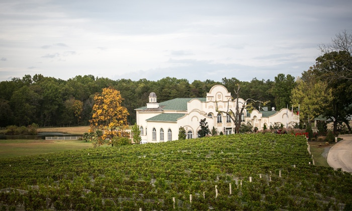 Morais Vineyards & Winery - Queens Guard: Winery Tour for Two or Four with Cheese Plate and Wine Glasses at Morais Vineyards & Winery (50% Off)