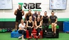 Up to 73% Off on Gym at Tribe41 Leichhardt