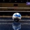 eKurs: Instruktor piłki siatkowej z zaśw. MEN