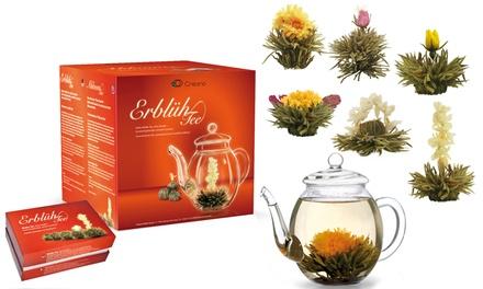 Confezioni di tè Creano con o senza teiera e scatola regalo in legno disponibili in vari gusti