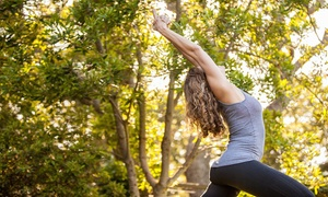 East West Yoga: 10 or 20 Yoga Classes at East West Yoga (68% Off)