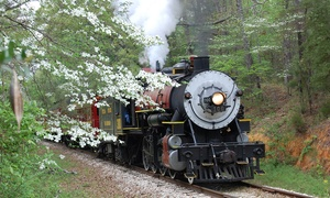 Up to 46% Off Train Excursion at Texas State Railroad at Texas State Railroad, plus 6.0% Cash Back from Ebates.
