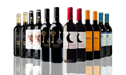 12 Bottles of Spanish Mixed Red Wines for £59.99 With Free Delivery (65% Off)