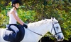Up to 55% Off Horseback-Riding Lessons in Burbank