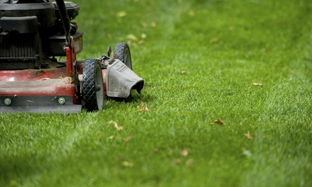 $39 for $75 Groupon — best choice lawn service