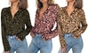 Women's Leopard Print Top Long Sleeve Blouse