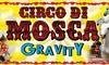 Circo David Orfei, Pordenone