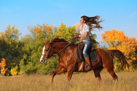 20% Off Horse Back Riding - Recreational