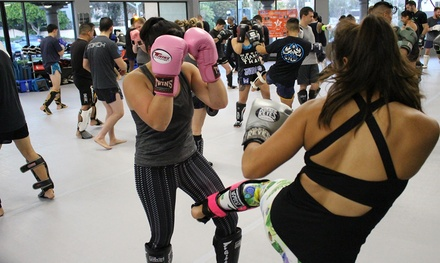 $30 for One Month of Adult Unlimited Classes ($178 Value) — Steel MMA and Fitness