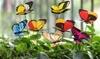 Mariposas de jardín